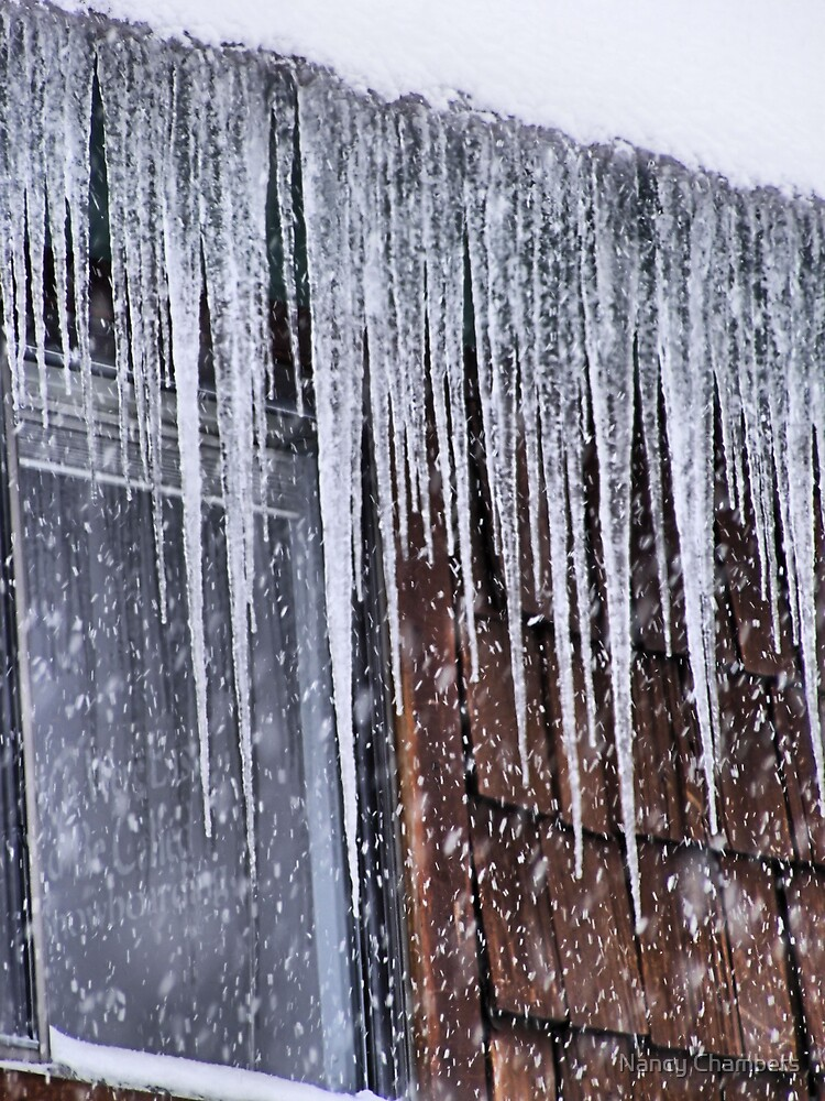 Now Those Are Icicles by NancyC