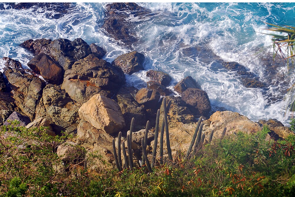 Ocean Scape - St Thomas by roscoedv