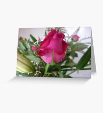 Rosebud - A beauty to unfold-Oct.2010, Spring Greeting Card