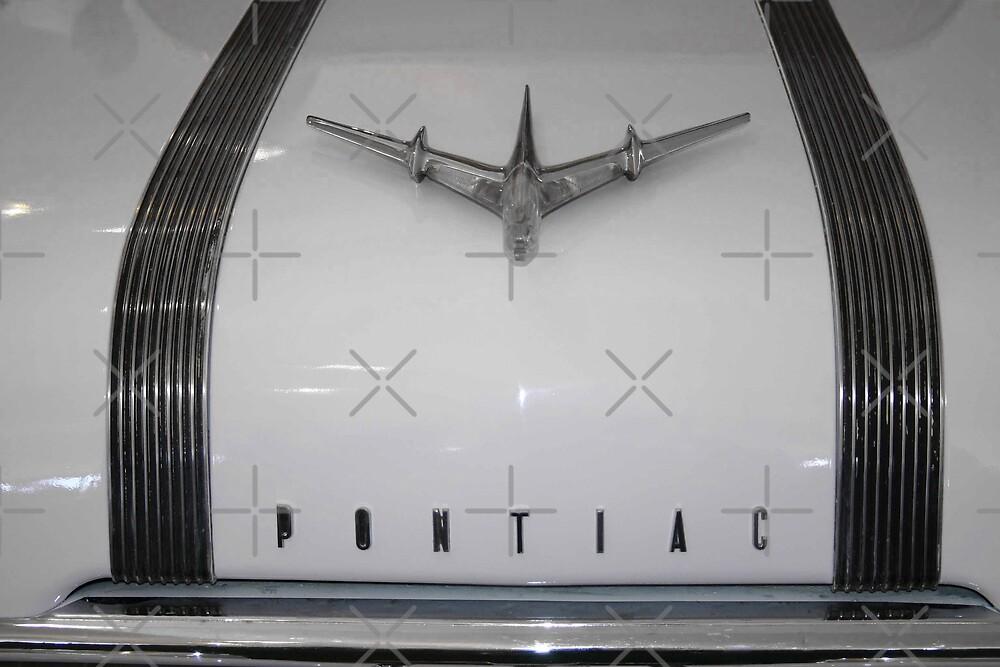Fly In A Pontiac by CarolM