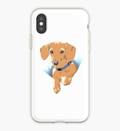 Pocket Puppy Blue aqua iPhone Case