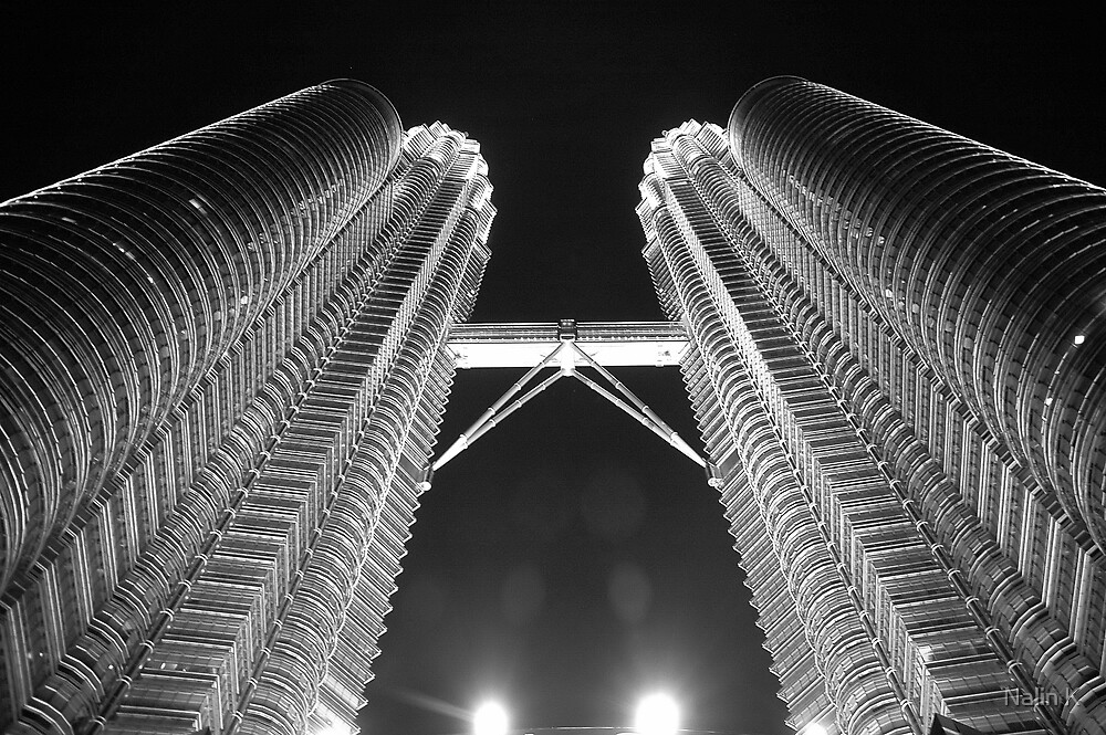 Twin Towers by Nalin K