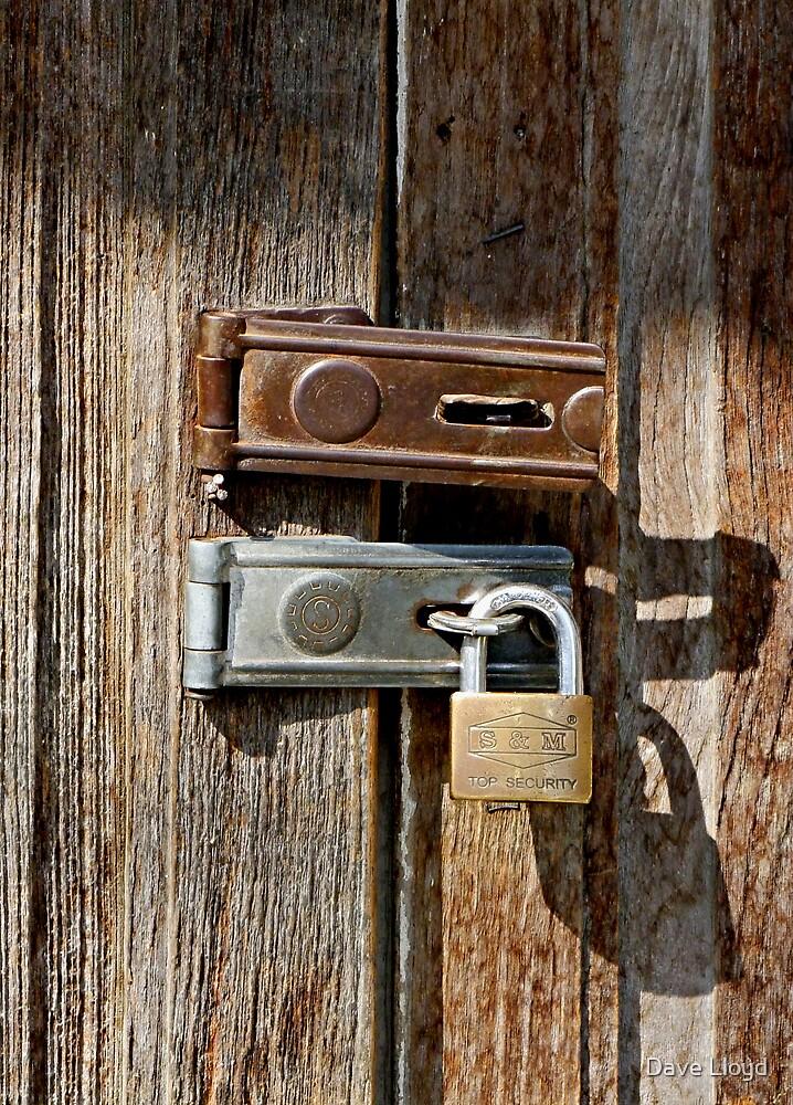 Lock I by Dave Lloyd