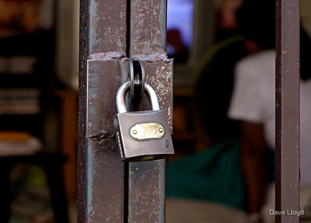 Lock III by Dave Lloyd