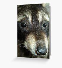 Beady Eyes Greeting Card