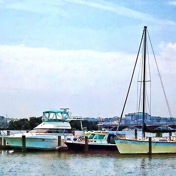 Alexandria VA - Boats on the Potomac Near Founders Park by SudaP0408