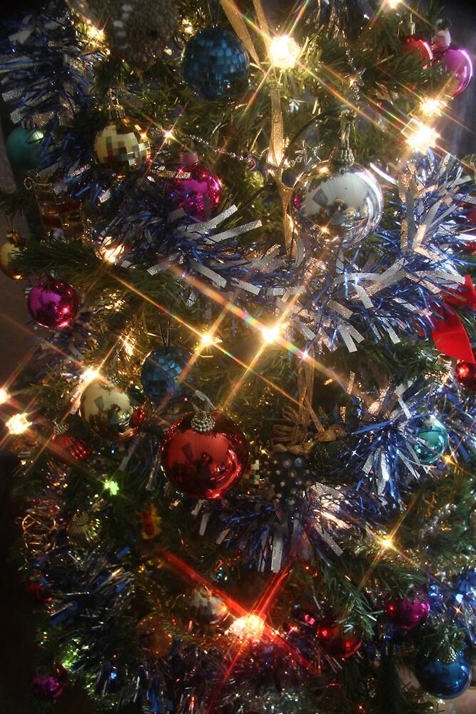 Christmas stars by Stephen Denham