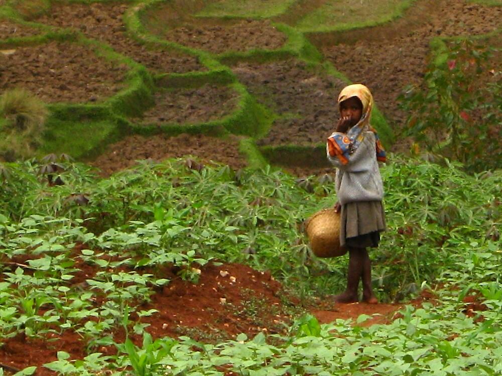 field worker by emma relph