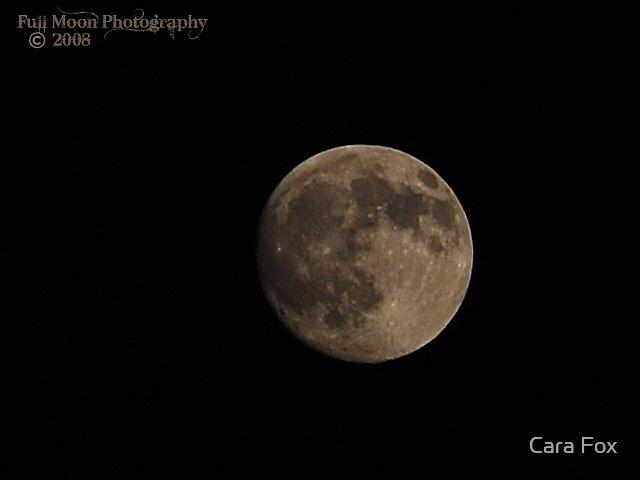 Full Moon by Cara Fox