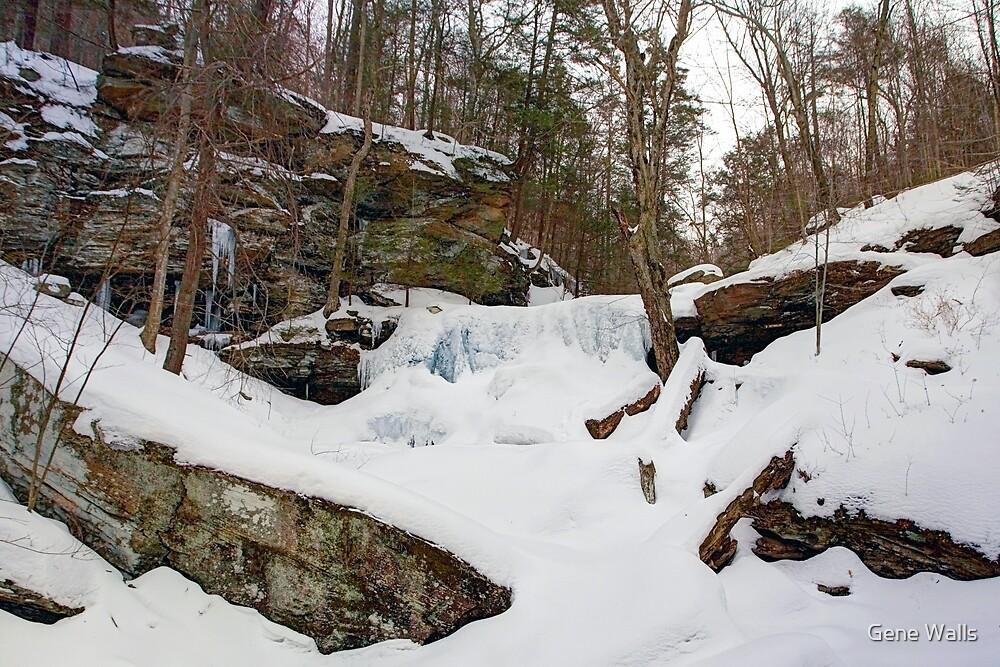 Winter Silences B. Reynolds Falls by Gene Walls
