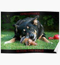 Christmas is for the Dogs Poster
