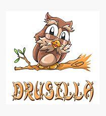 Drusilla Owl Photographic Print