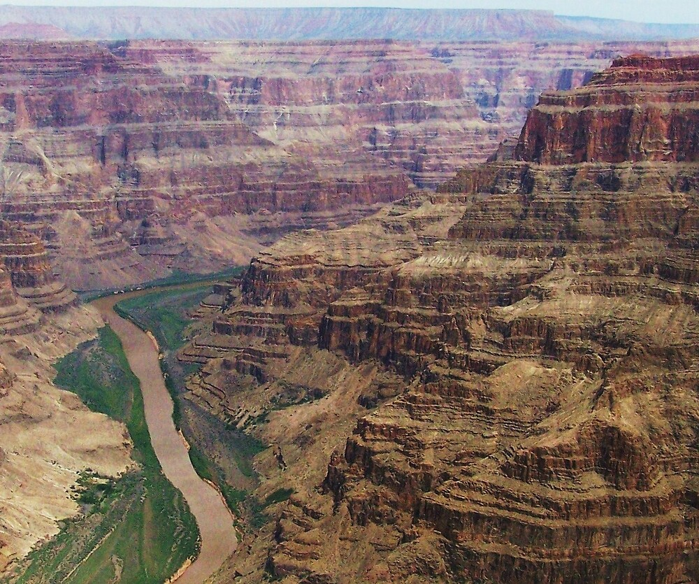 Grand Canyon, North Rim by Opal Westmoreland
