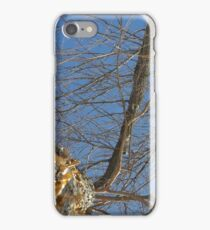Blue Skies 011 iPhone Case/Skin