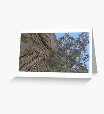 Blue Skies 018 Greeting Card