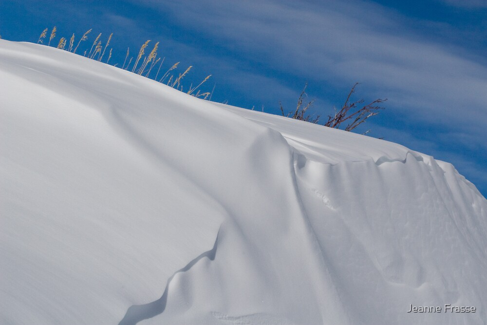 Another snowy bank  by Jeanne Frasse