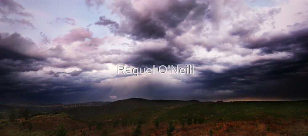 Stormy Weather by Raquel O'Neill