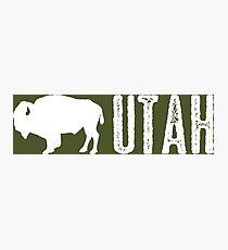 Bison: Utah Photographic Print