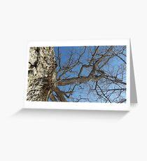 Blue Skies 025 Greeting Card