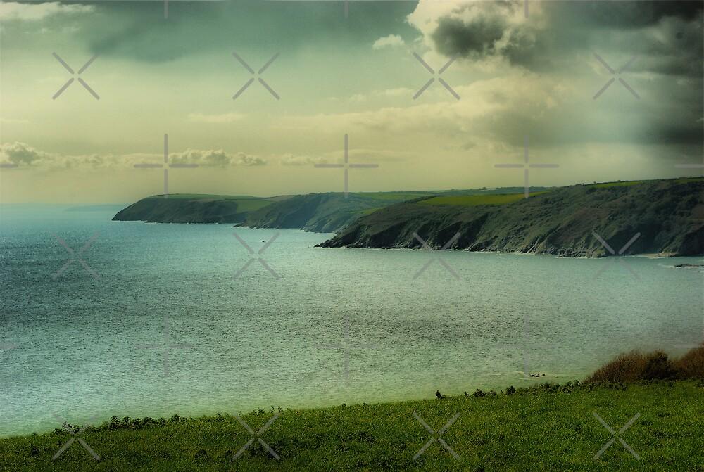 Mevagissey Coastline by Catherine Hamilton-Veal  ©