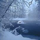 « Cold » par Päivi  Valkonen