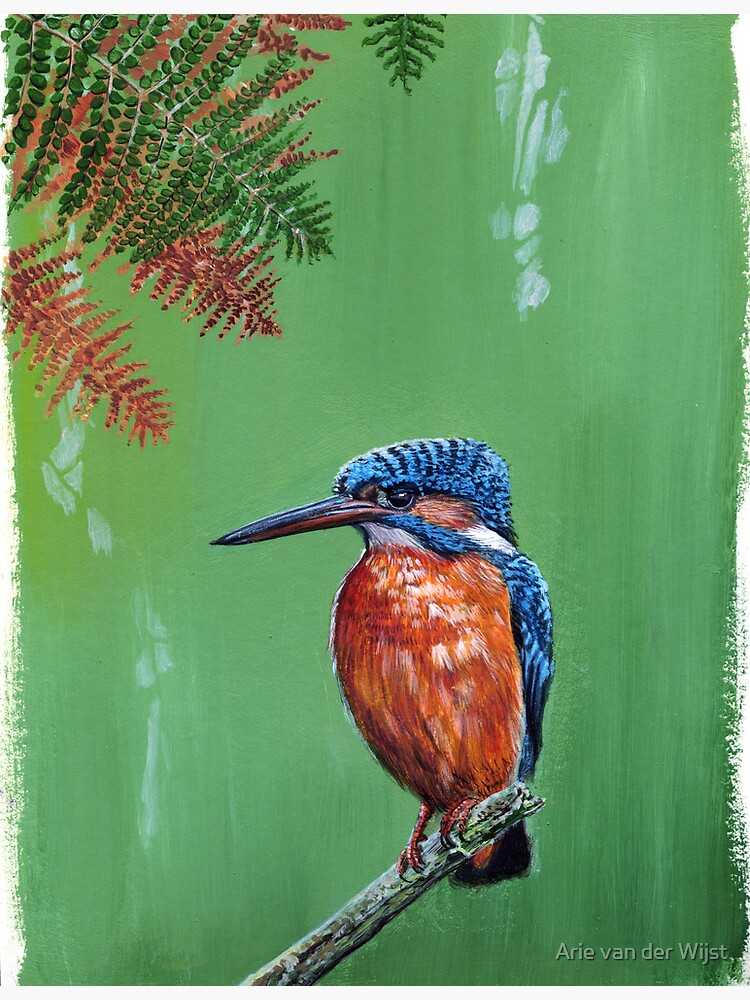 Kingfisher by Aart