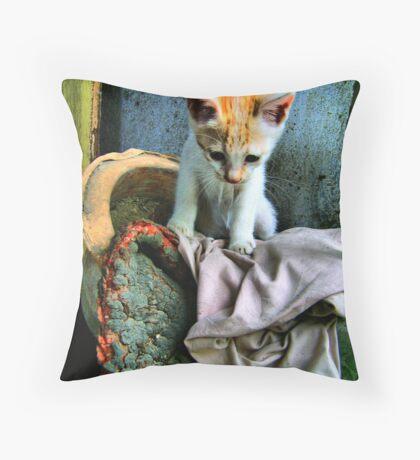 Sad kitty Throw Pillow