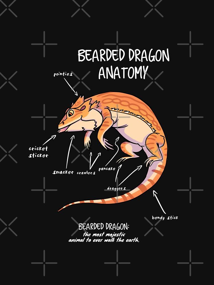 Bearded Dragon Anatomy Classic T Shirt By Animalartist Redbubble