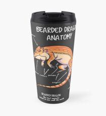 bearded dragon anatomy Thermobecher