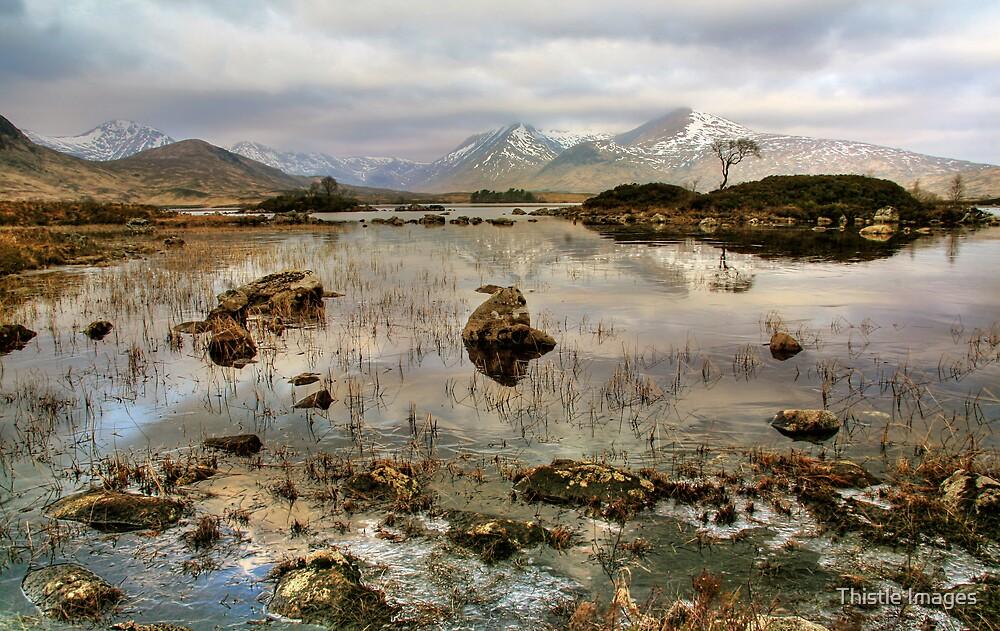 Scottish Landscape by Thistle Images