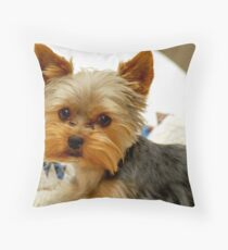 Yorkie in Bed Throw Pillow