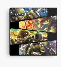 TMNT - Turtle Power Metal Print