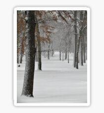 Snowy day in New York City  Sticker