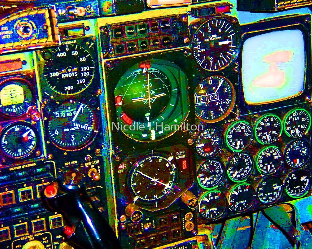 In the Cockpit by Nicole I Hamilton