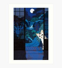 Cat in the night Art Print