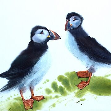 Puffins love by Ivanka24