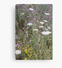 Mackinac Island Wildflowers Canvas Print