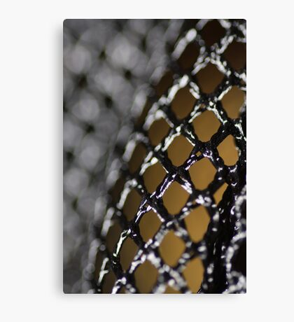 Fenced In Canvas Print