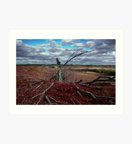 Red Grass Hill Art Print