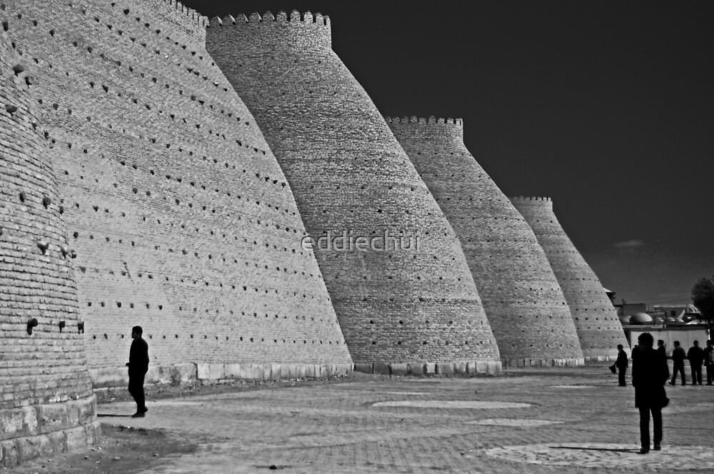 Wall of the Bukhara Fortress, The Ark by eddiechui
