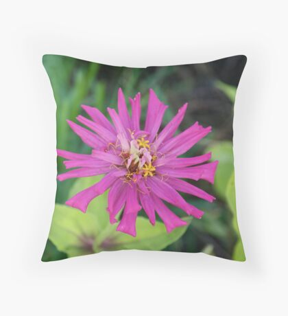 Zinnia's End Throw Pillow