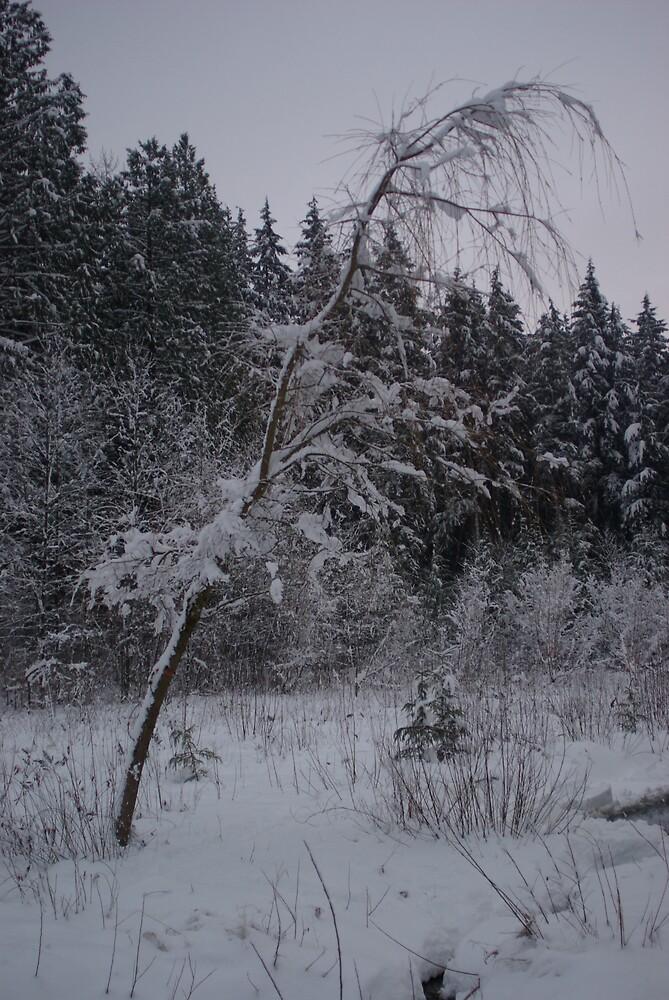 White Christmas 3 by stiavo89