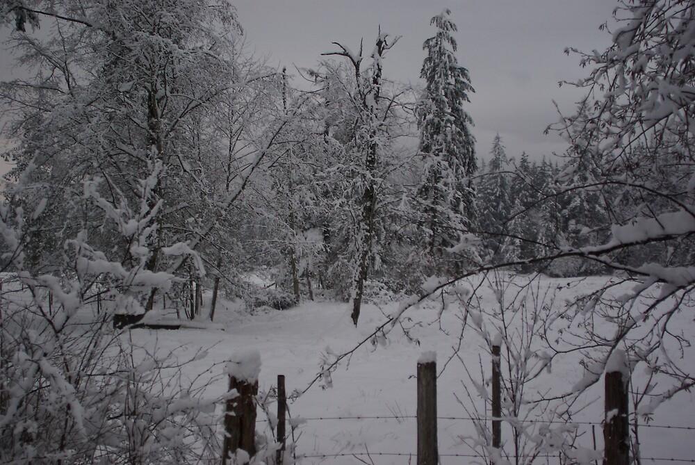 White Christmas 4 by stiavo89