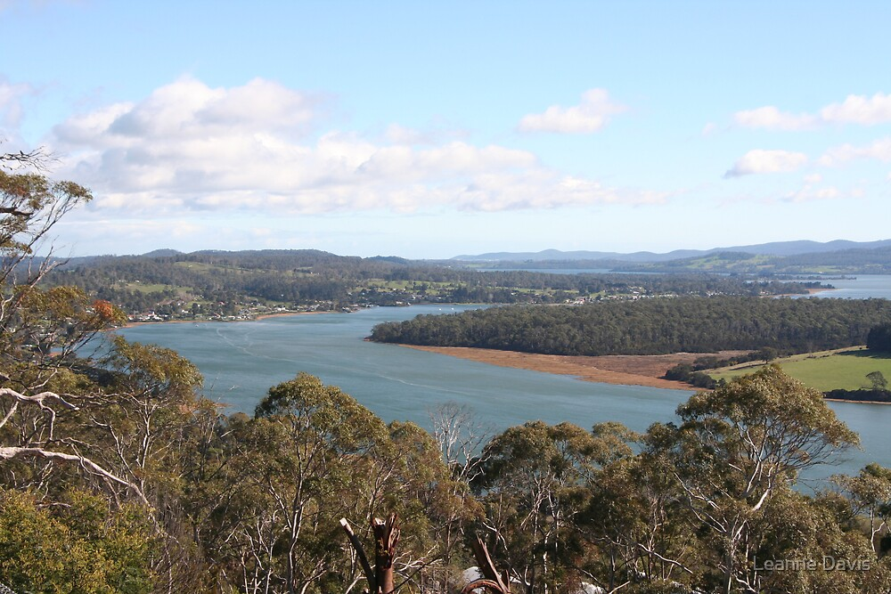 Tamar River Valley 2 by Leanne Davis