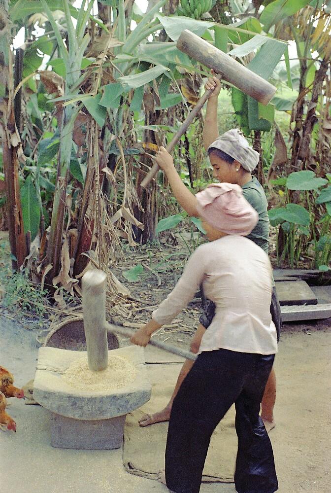 Woman's Work Vietnam by Bill2