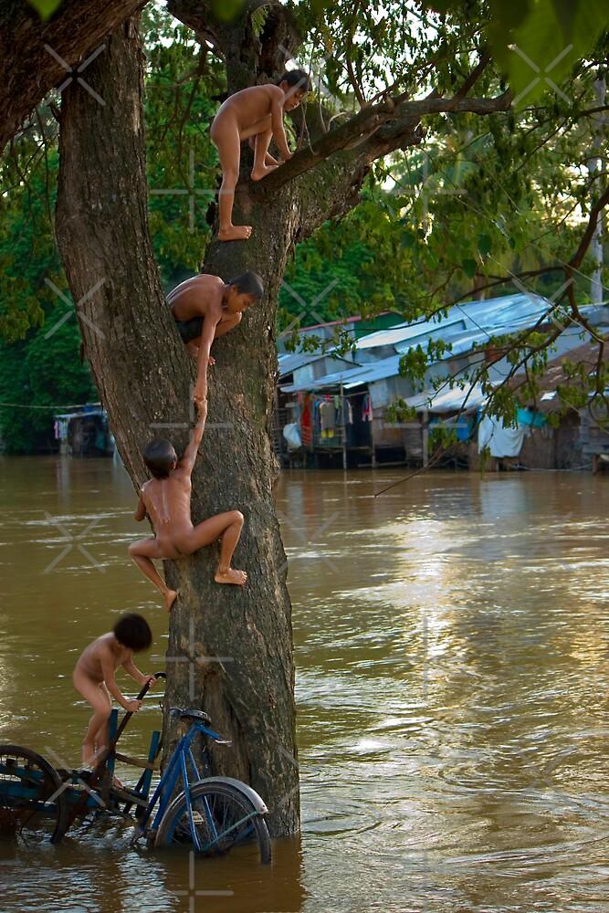 Tree Monkeys by Adrianne Yzerman