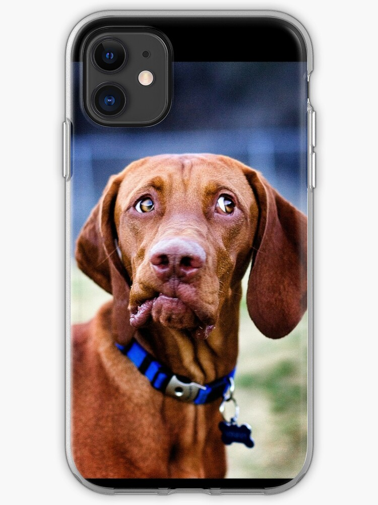 Dog Day in the Park iphone case