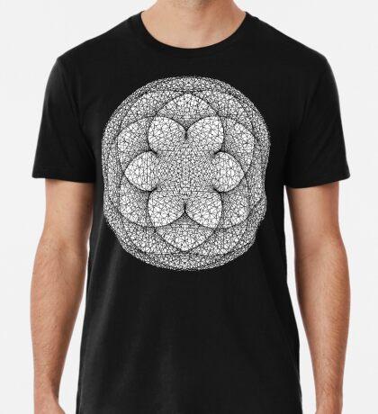 Cardiod Modulo n = 455 m = 500 Premium T-Shirt