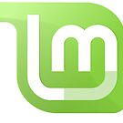 Linux Mint by devtee