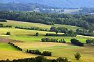 Rural landscape at springtime by Patrick Morand